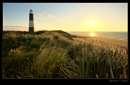 Spurn Grass by AntHolloway