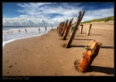 Withstood the Tide by AntHolloway