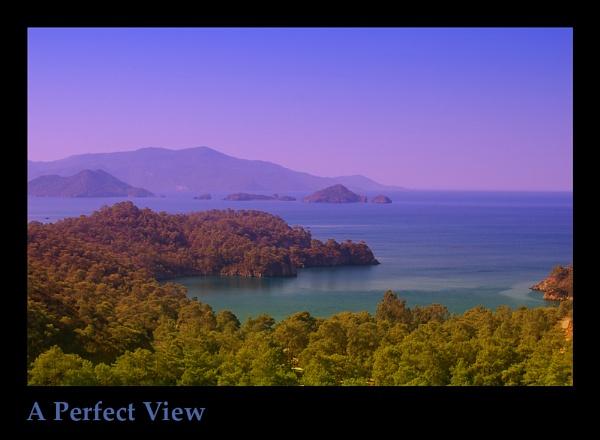 View by ferguspatterson