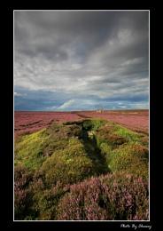 Egton Moor Storm