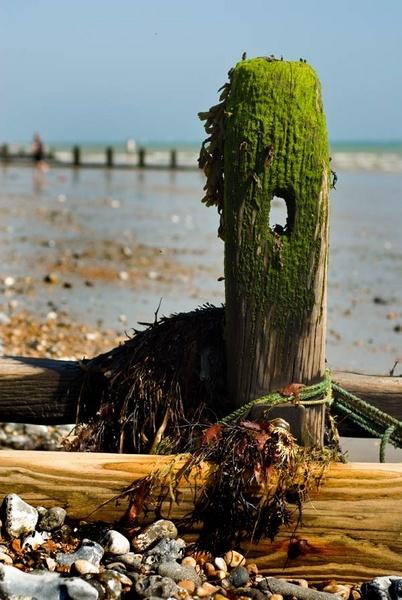 Seaside in the sun by Juliee