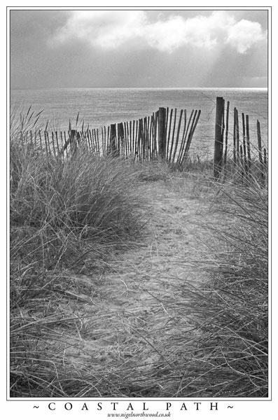 coastal path by big_baboon