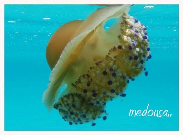 Medousa by nasia