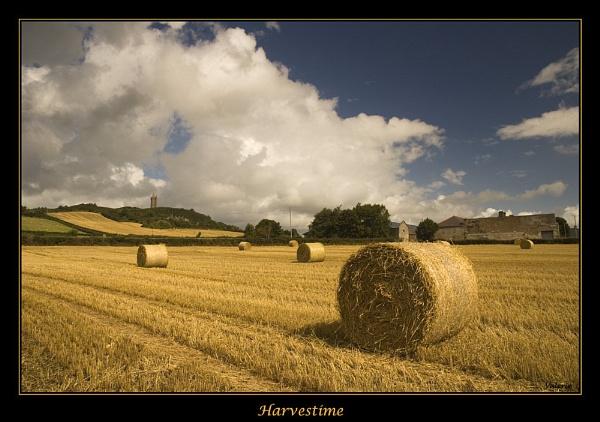 Harvestime by Valerie1