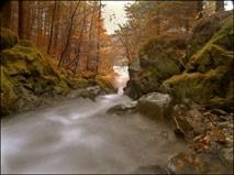 autumn pool by wavey