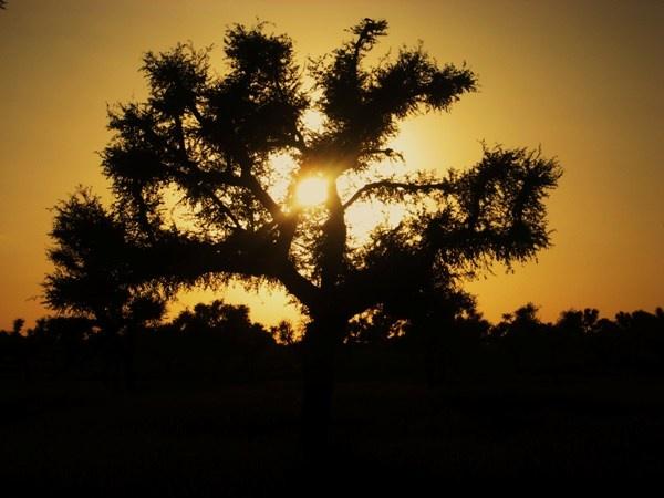sunset !! by jairathore