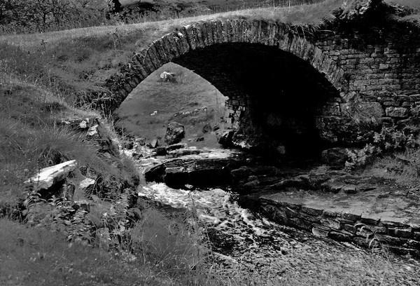Little Bridge by Bogwoppett