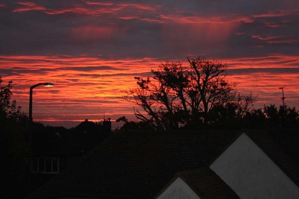 from my window by ambrosej9