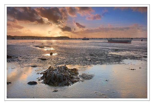 Evening Tide by debster