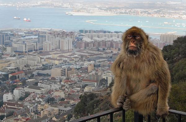 Gibraltar by elcid
