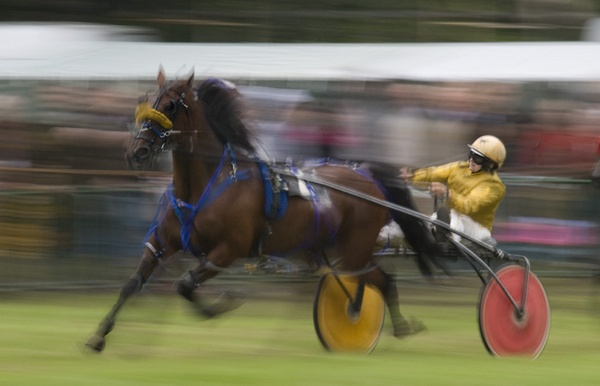 The Trotting race by GeorgeLedger