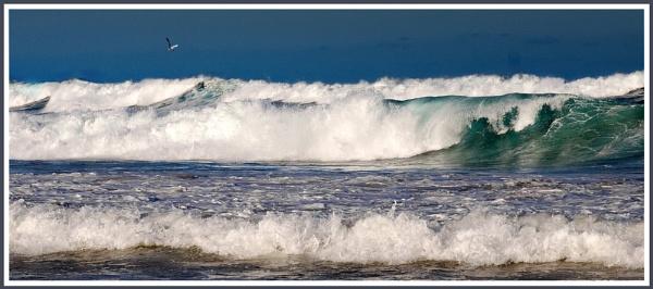 surf\'s up! by glassmaker