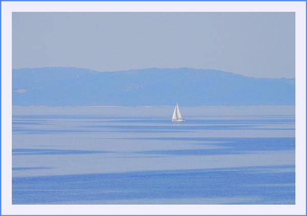 White on Blue by trissie