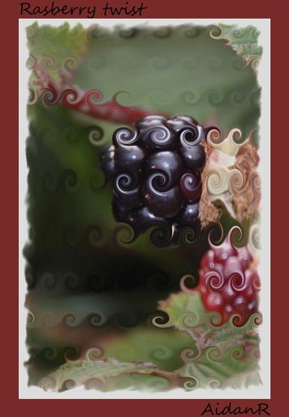 Rasberry twist by Ridgeway