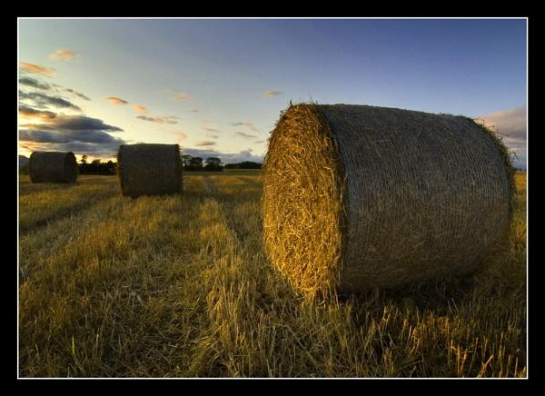 Evening Bales by Boagman65