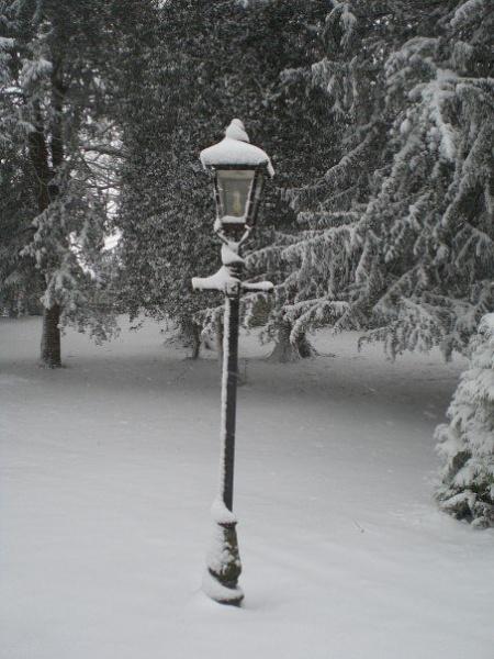 Narnia by Costy