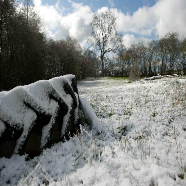 April snow by LinH