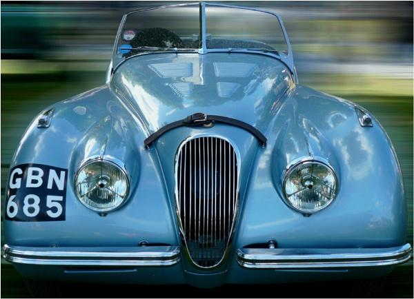 the Jaguar by WimdeVos