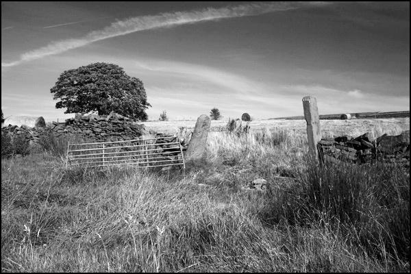 gatepost by christabella