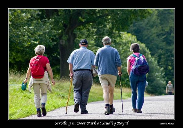 Strolling by peugeot406