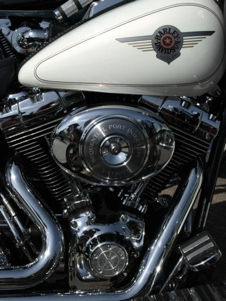 Harley Davidson. by JeremyTrickett