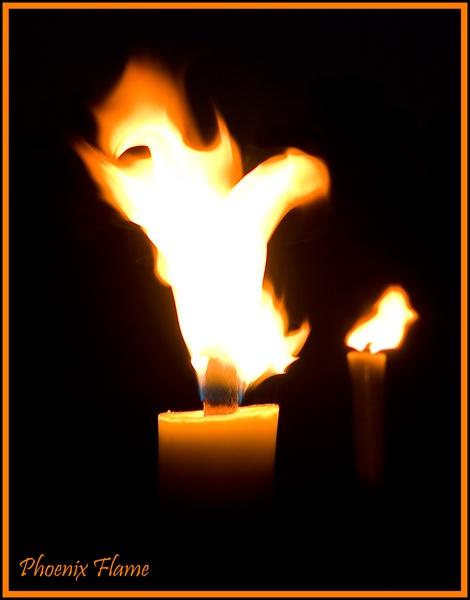 Phoenix Flame by 11thearlofmar