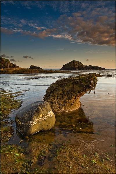 Seal Rock by Goggz