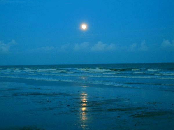 Moonlit Sea by Nabs