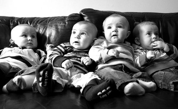 Baby boys by vickik