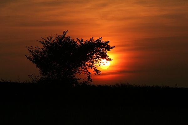 Autumnal evening by steveg