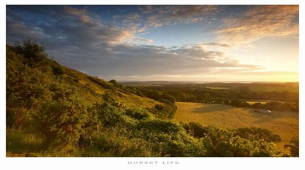 Dorset Life.. by chris-p
