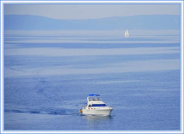 White on Blue II by trissie
