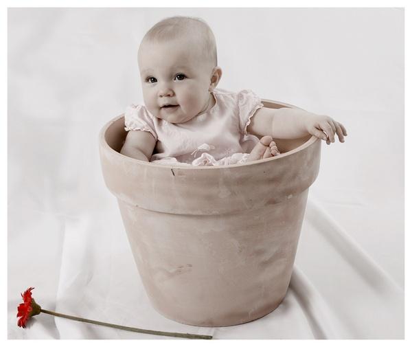 flowerpot baby by debstownsend