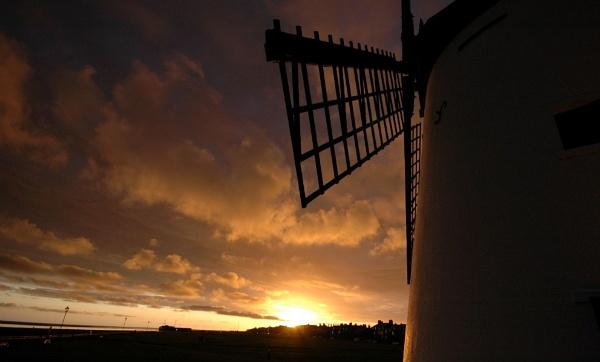 Windset by Birdseye