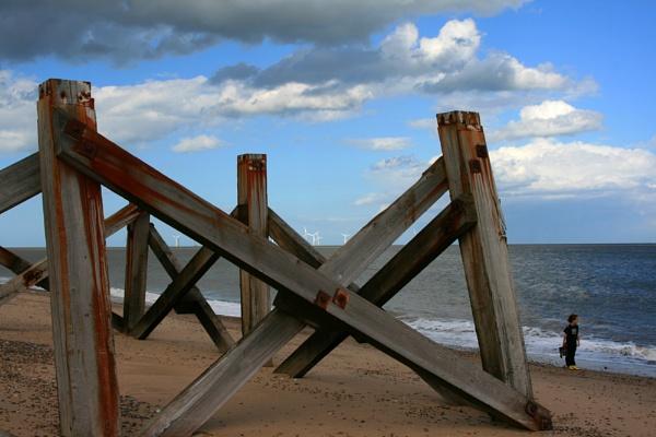 on the beach by shelldud