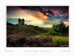 Mynydd Parys II