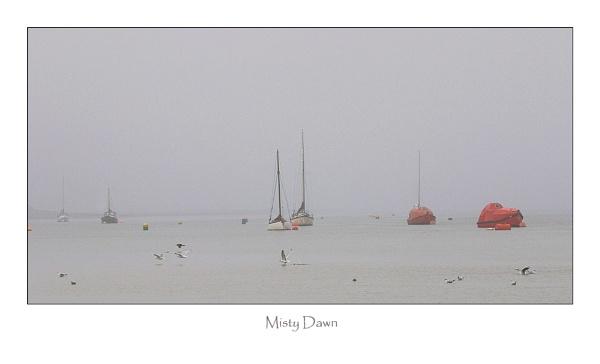 Misty Dawn by jeanie