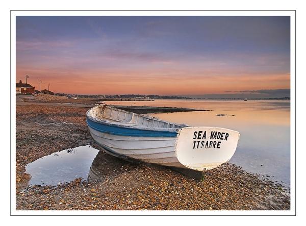 Sea Wader by debster