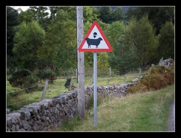 WARNING ... by AliMurray