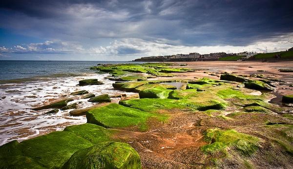 Newcastle - On the Beach by Elemobe