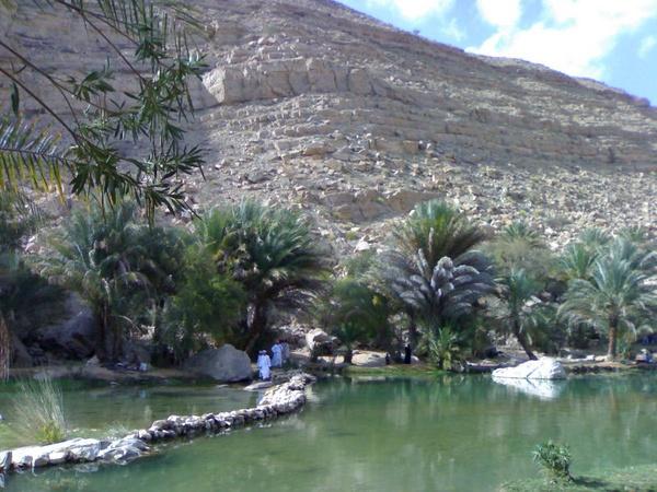 Wadi Khalid oasis - Oman by carylofarabia