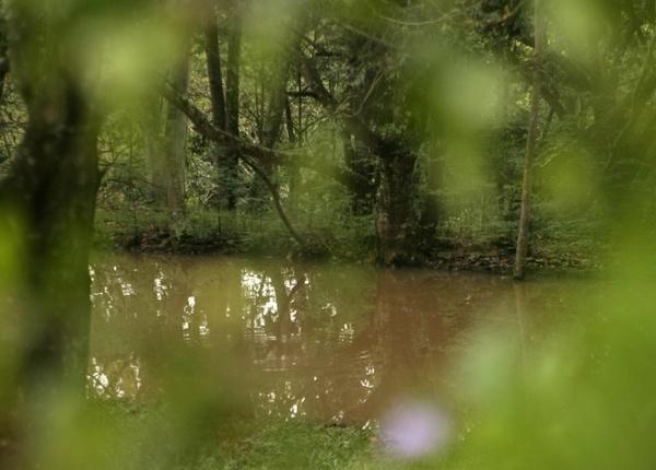 The lake by crispf