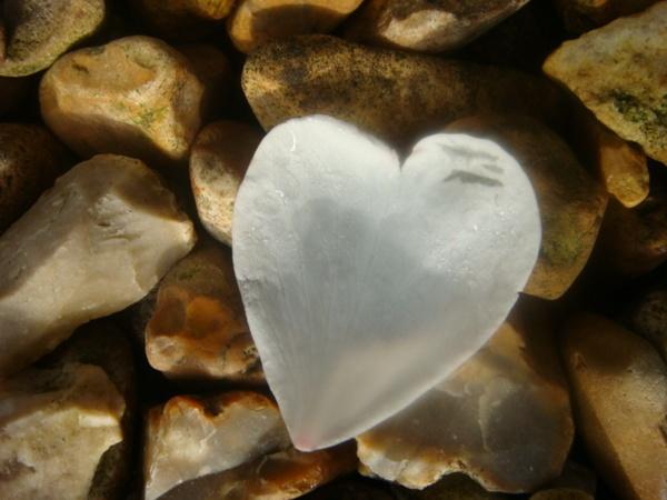 falllen heart by lillizzie