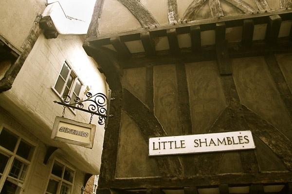 Little Shambles by Adele1979