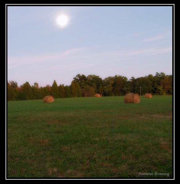 Autumn Evening by PeelNStick