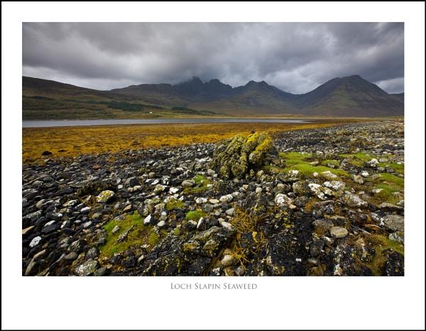 Loch Slapin Seaweed.... by Scottishlandscapes