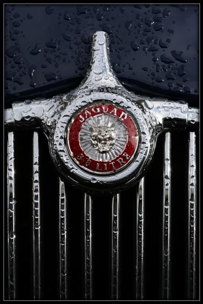 Jaguar Badge by Morpyre
