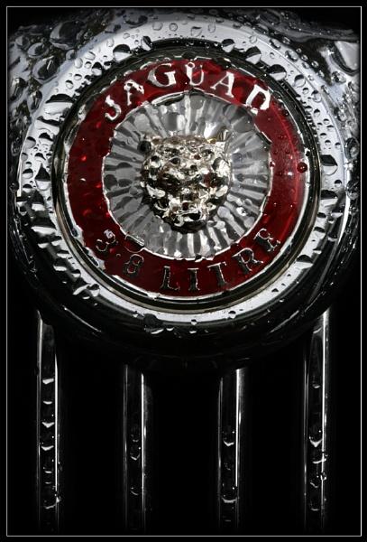 Jaguar Badge 2 by Morpyre