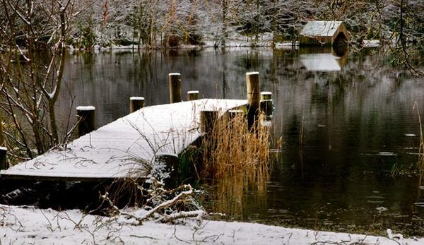 Loch Ard winter by carrot_heid