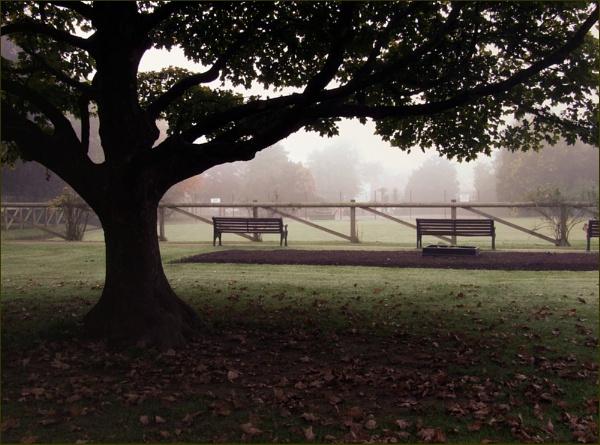 More mist by helenlinda